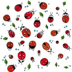 Beautiful insects ladybugs