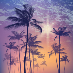 Wall Mural - Silhouette of palm tree and sunset sky