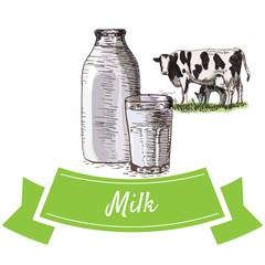 Milk colorful illustration.