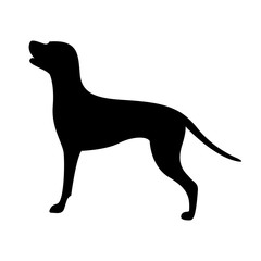 dog silhouette, vector