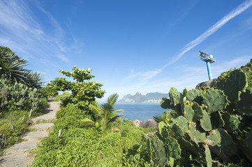 Scenic morning view of Two Brothers Mountain from tropical vegetation at Arpoador