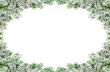 frame from green pine branches in snow