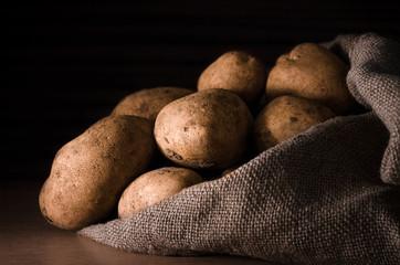 Fresh potatoes in the sack