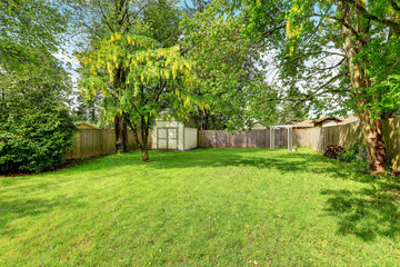 Green grass and a shed in empty fenced back yard