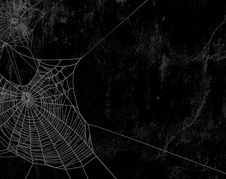 spider web against black shabby wall background