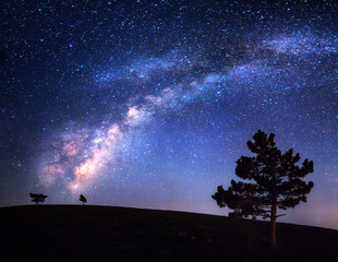 Milky Way. Beautiful night landscape. Sky with stars. Background