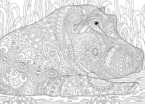 Stylized hippopotamus (hippo) swimming among water lilies (lotus flowers) and pond algae. Freehand sketch for adult anti stress coloring book page with doodle and zentangle elements.
