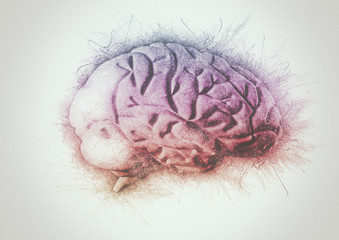 Creative brain multi color pencil sketch
