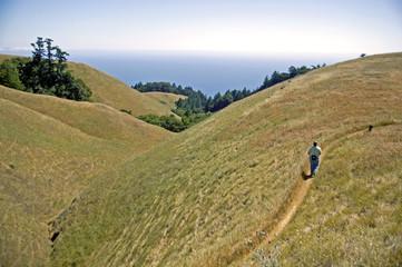 hikers on hillside