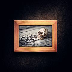 Halloween decoration with skull in wooden photo frame over grunge background