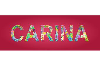 Vorname Carina, Grafik