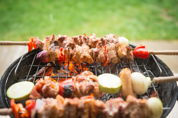 Skewers of various meats and vegetables