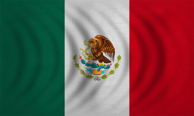 Flag of Mexico wavy, real detailed fabric texture