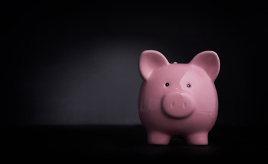 Pink Piggy Bank Isolated on a Dark Background