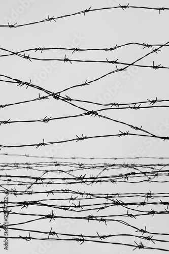Quot fencing fence with barbed wire let jail thorns block