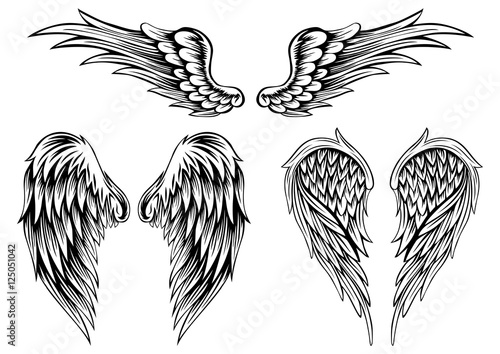 wings stock image and royalty free vector files on fotolia com