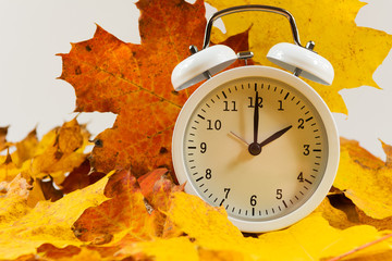 Autumn leaves and alarm clock. Autumn time change.