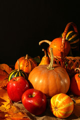 Autumn still life apples, pumpkins and autumn leaves background for thanksgiving day