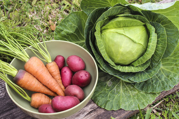 Image of Harvested Kitchen Garden Vegetables