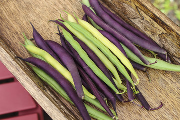 Image of Mixed String Beans