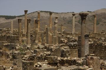 Columns of Djemila, Algeria
