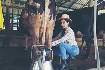 attractive female farmers milkmaid, milking cows on farm