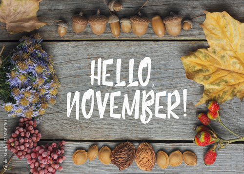 Image result for royalty free images hello november