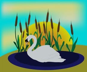 плавающий лебедь