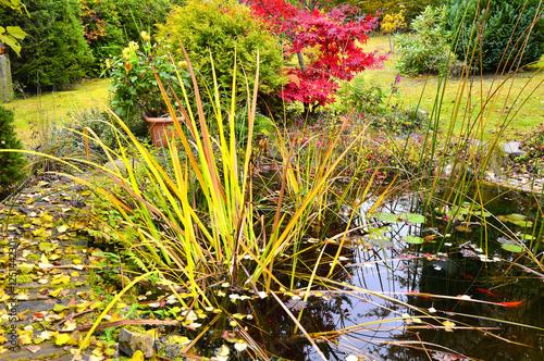Bunter Herbst Im Garten An Einem Teich Mit Einem Buddha Stock Photo