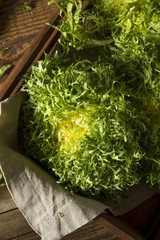 Raw Green Organic Frisee Lettuce