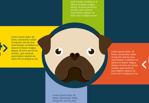 Pug Face Illustration Dog and Pet Care Infographic 2