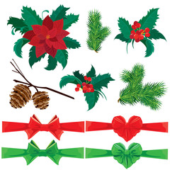 Set of winter holiday plants, flowers, berries and bows. Could b