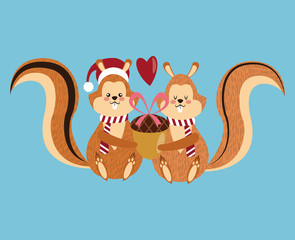Couple of squirrel cartoon icon. Christmas season card decoration and celebration theme. Colorful design. Vector illustration