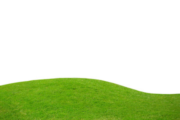 Green grass on hill isolated over white background Wall mural