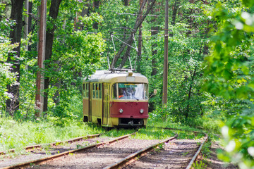 Old tram among the forest