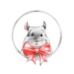 Chinchilla 1. Watercolor cute mouse.