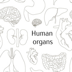 Different human organs set pattern