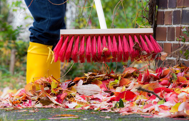 Leaves are swept together with a broom