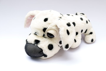 Cute  plush dog on white background.