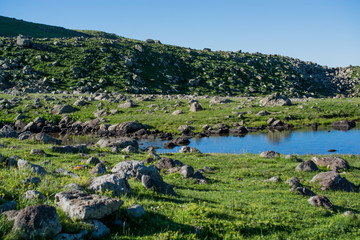 Highland lake in green natural background in Artvin