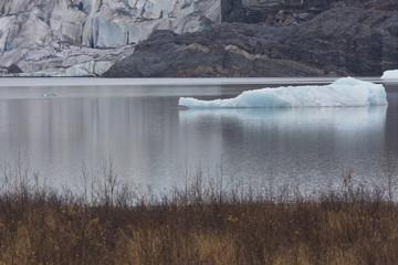 Broken iceberg segment of Mendenhall Glacier