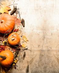 Autumn harvest. Ripe pumpkin with leaves.
