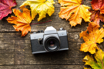 Vintage photo camera and dry leaves on wooden background.