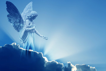 Beautiful angel in heaven Wall mural