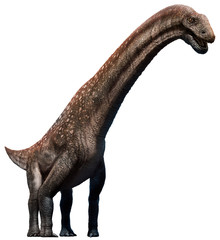 Wall Mural - Titanosaurus