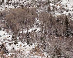 Looking down in Tensleep Canyon Winter View