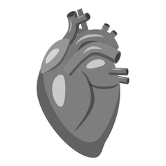 Human heart icon. Gray monochrome illustration of human heart vector icon for web