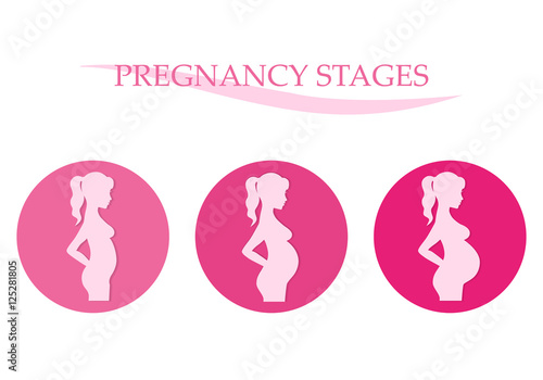 an introduction to the analysis of stages of pregnancy For more information on foetal development and maternal changes during pregnancy, see stages of pregnancy for more information about pregnancy, including preconception advice, stages of pregnancy, investigations, complications, living with pregnancy and birth, see pregnancy.