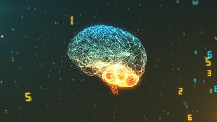 Abstract digital data brain concept