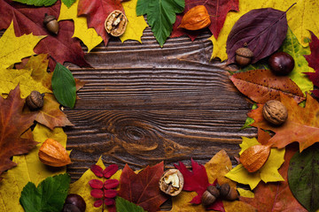 autumn still life, fall leaves, gifts of autumn, copy space, wooden background, walnuts, maple leaves - autumn composition from top. Free space for text. Colorful autumn leaves